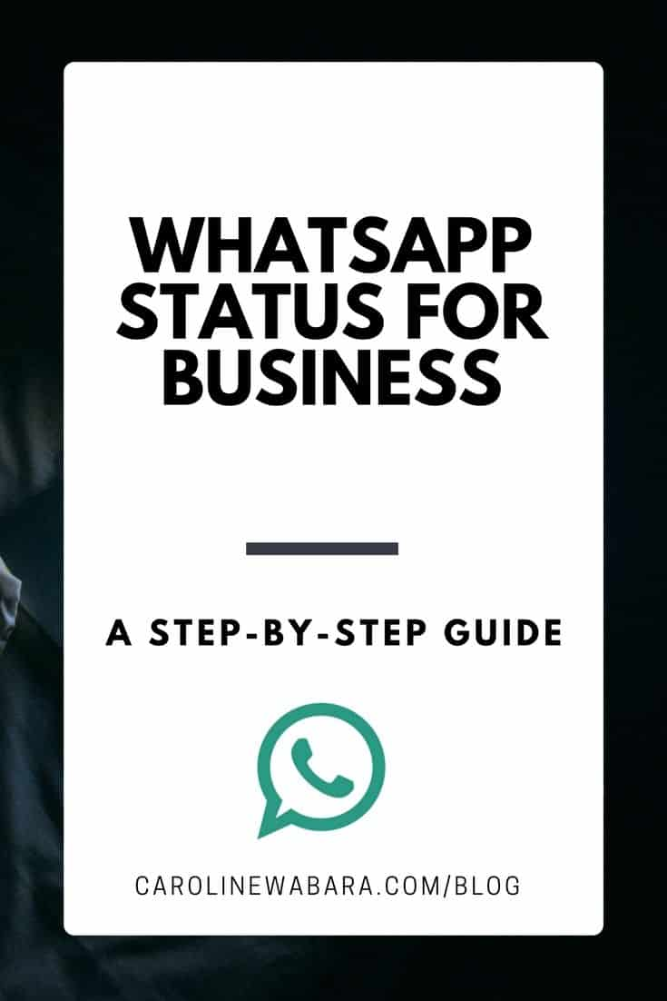 How To Use Whatsapp Status Update For Business In Nigeria